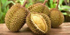 benefícios do durian para saúde