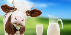 quais os benefícios do leite?