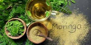 beneficios da moringa