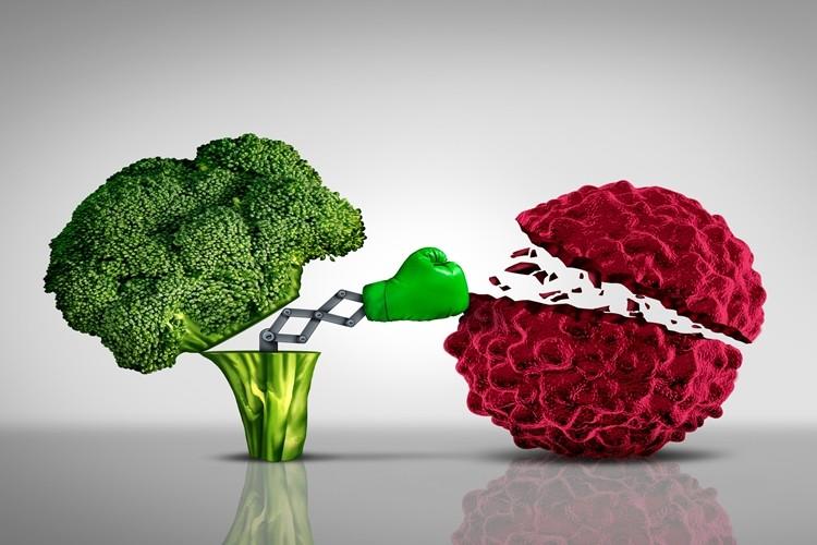 alimentos que combatem o cancer