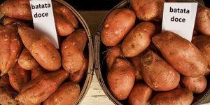 beneficios da batata doce