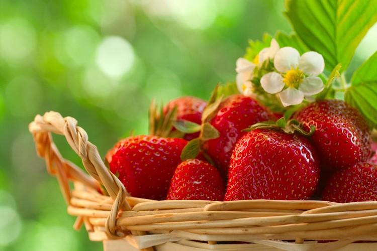 Chá de Morango e bom Para a gestação: veja 20 benefícios