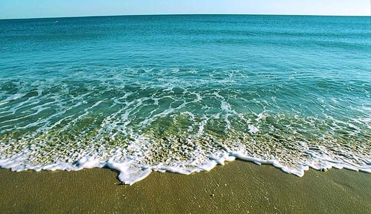 Os 15 Benefícios da Água do Mar Para Saúde
