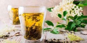 beneficios-chá de sabugueiro