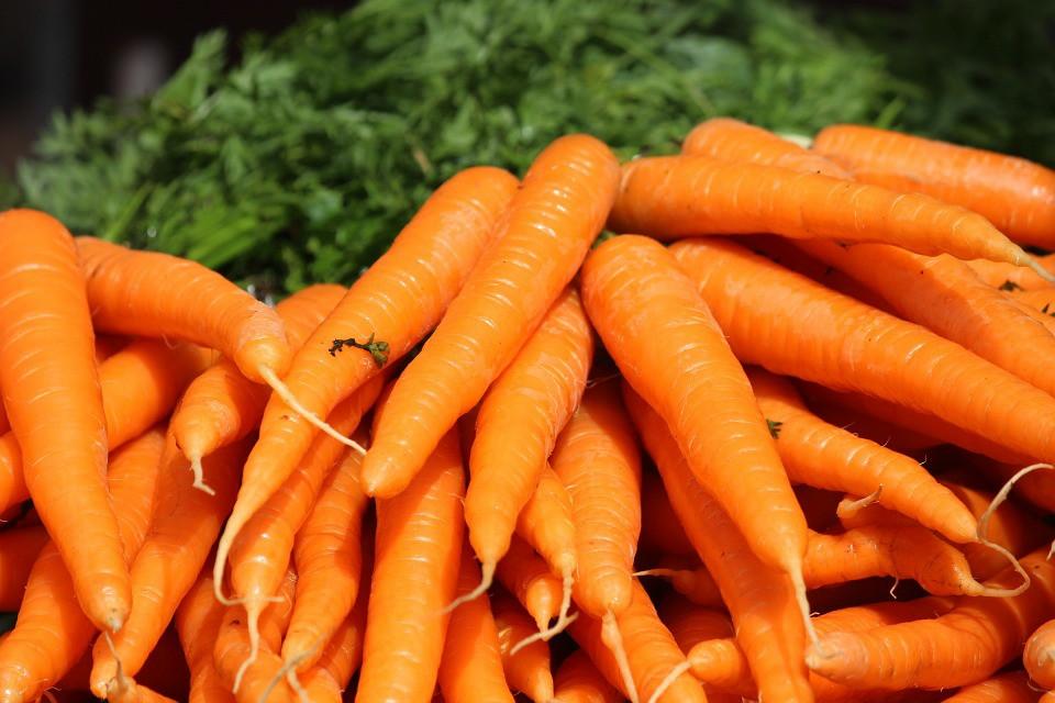 Os 30 Benefícios da Cenoura Para Saúde!
