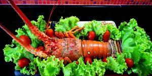 benefício da lagosta