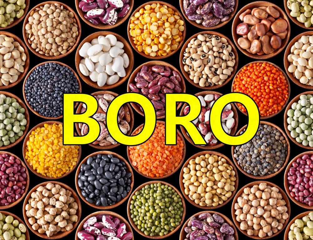 Boro – O que é, Benefícios e Deficiências