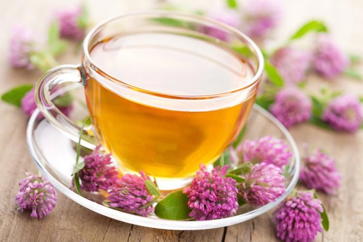 Os 15 Benefícios do Chá de Valeriana Para Saúde