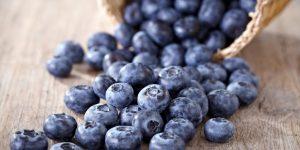 Os 30 Benefícios do Mirtilo Para Saúde