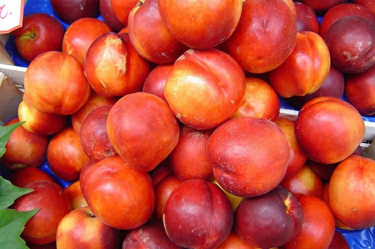 beneficios da nectarina