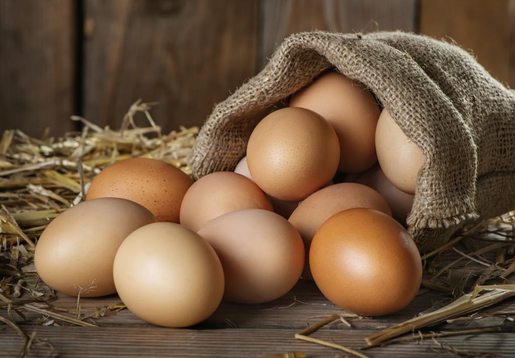 Os 21 Benefícios do Ovo Para Saúde