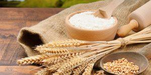 quais os principais benefícios do trigo?
