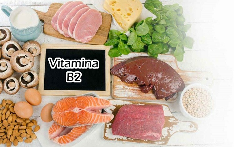 para que serve a vitamina B2?