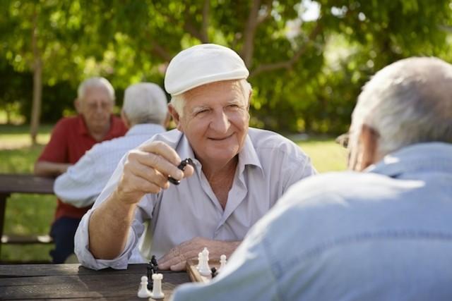 Os 5 Alimentos Que Previnem a Doença de Alzheimer