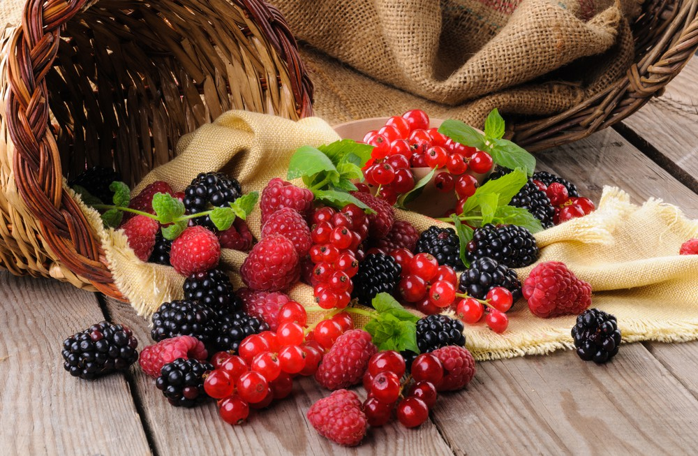 alimentos que previnem doenca de alzheimer