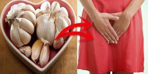 alimentos da dieta antifungica