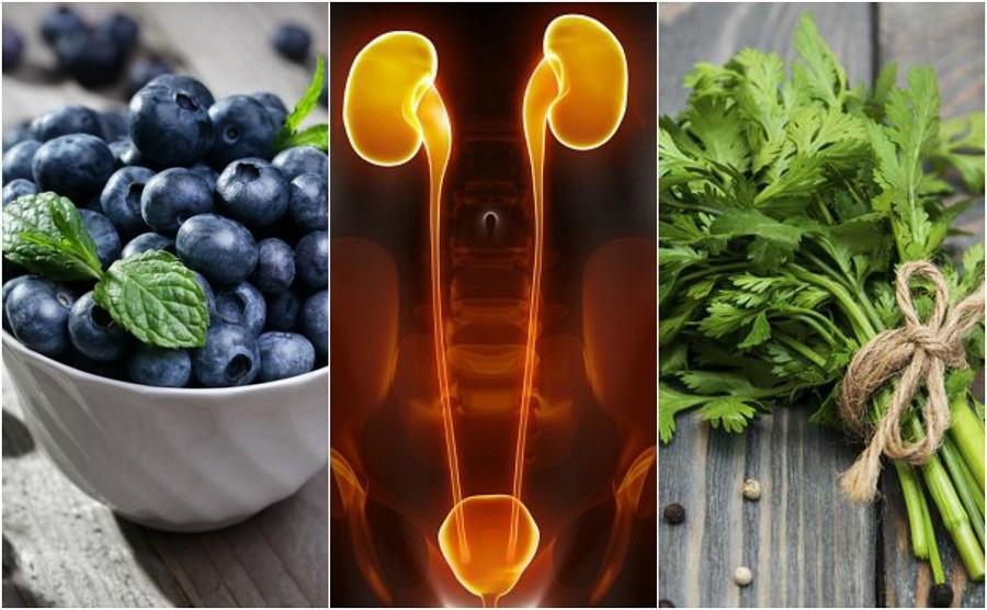 alimentos que melhoram a função dos rins naturalmente