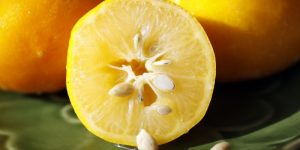 benefícios da semente de limao