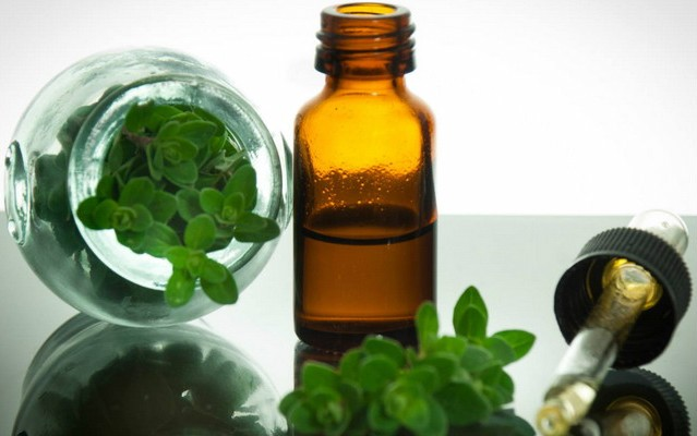 quais os benefícios do óleo de orégano?