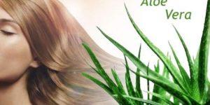 beneficios do aloe vera para o cabelo