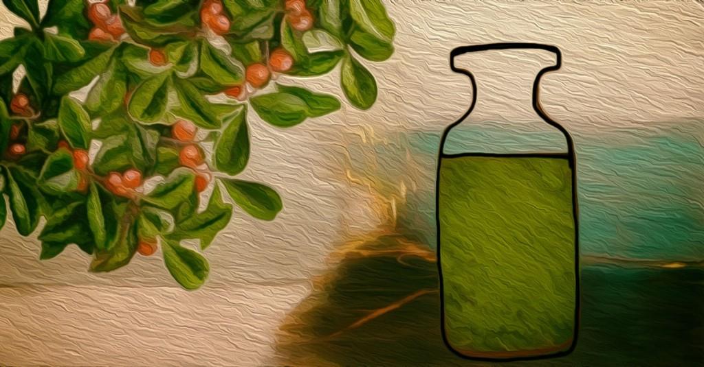 o óleo de patchouli elimina os fungos