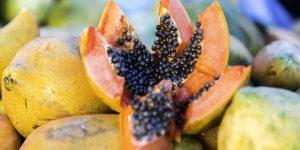 beneficios da semente de mamao