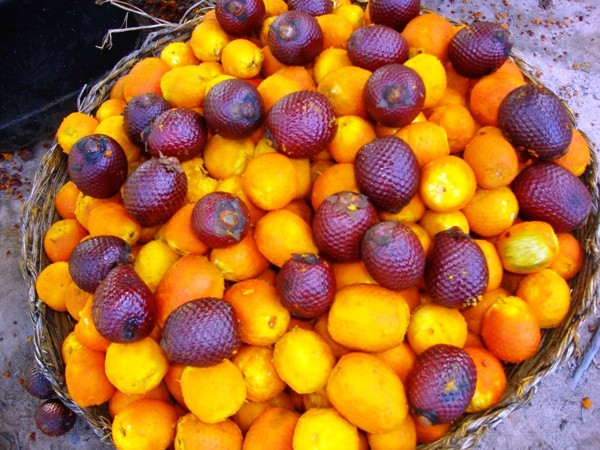 beneficios do caroço do buriti