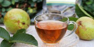 chá da casca de goiaba para saúde