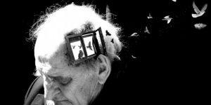como usar beterraba para tratar a demencia