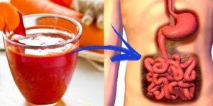 como desintoxicar o corpo?