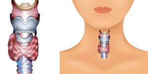 dieta da tiroide