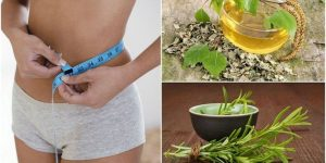 ervas para perder peso