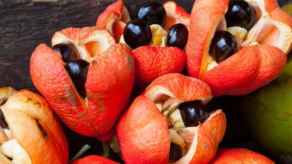 beneficios da fruta ackee