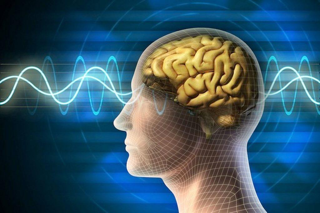 Os 5 Alimentos que Causam Disfunção Cognitiva