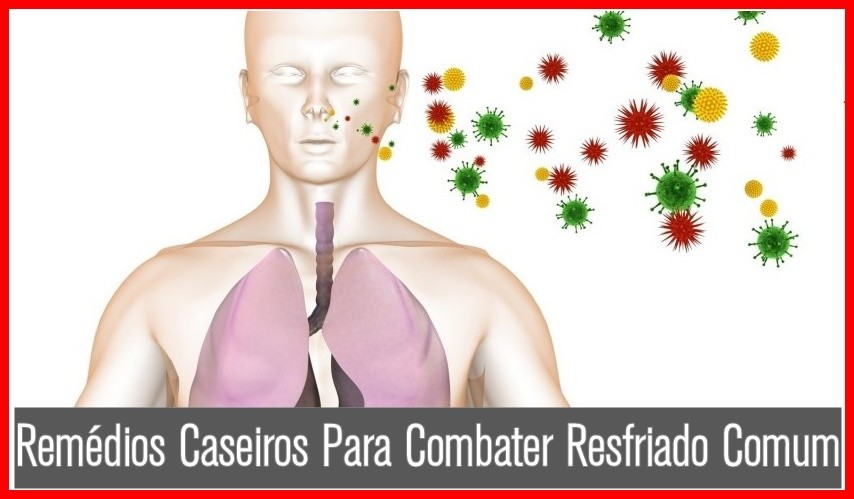 Remédios Caseiros Para Combater Resfriado Comum