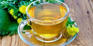 chá de rhodiola rosea