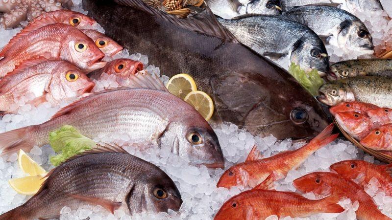 Tipos de Peixe para Perda de Peso