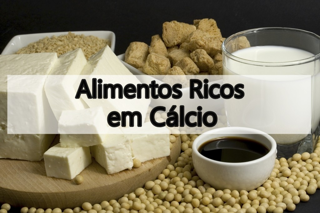 alimentos ricos em calcio
