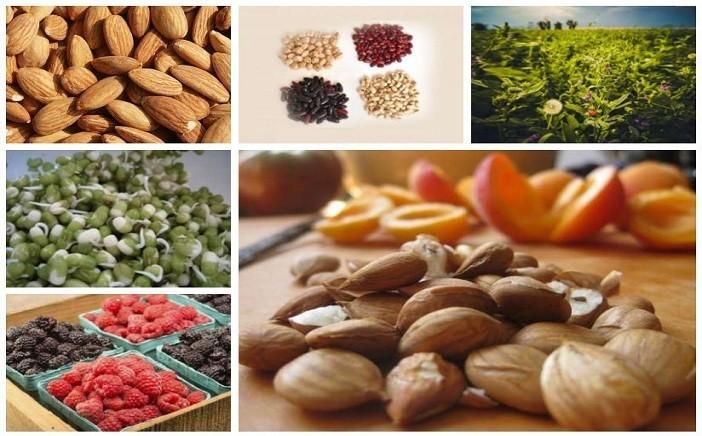 alimentos ricos em vitamina b17