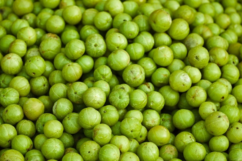 Amla reduz colesterol: veja 10 benefícios dessa fruta