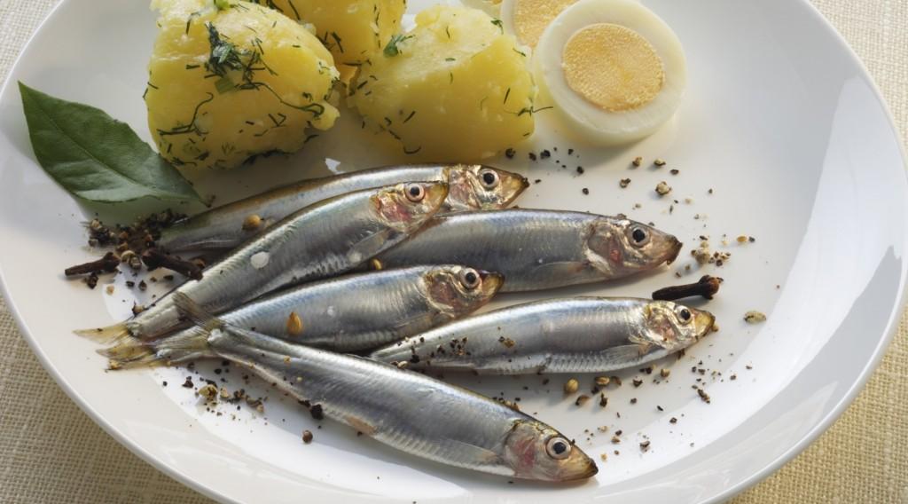 beneficios da anchova