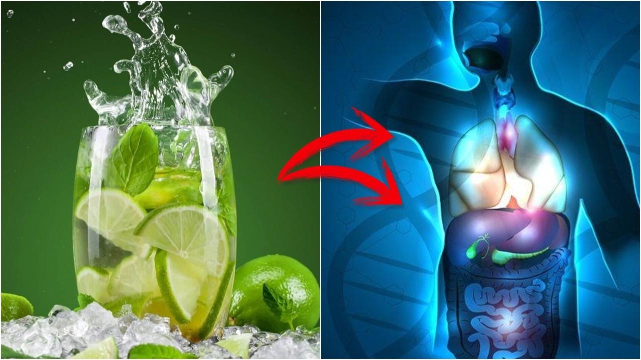 Os 17 Benefícios de Beber Água com Limão Pela Manhã