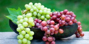 beneficios da uva