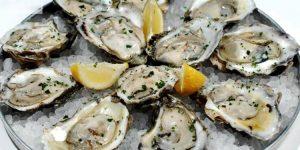 quais os benefícios das ostras?