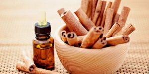 quais os benefícios do óleo de canela?