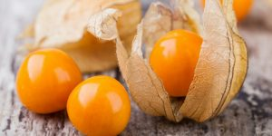 beneficios da Physalis
