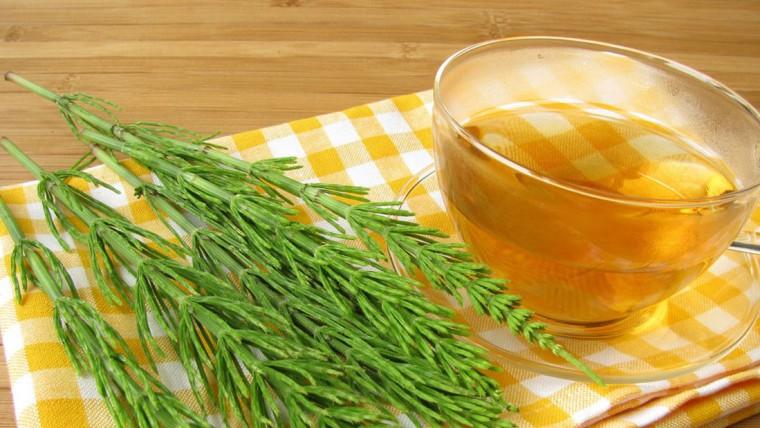 o chá de cavalinha pode tratar amígdalas inflamadas