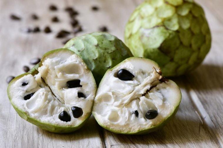 benefícios da cherimoia à saúde