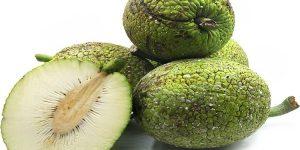 quais os benefícios da fruta-pão?
