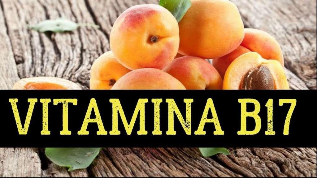 fontes de vitamina B17
